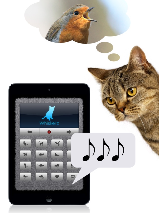 909be1de83d4 Human-to-Cat Translator on the App Store