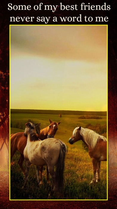 Horses - Wallpapers + Add Text screenshot 2