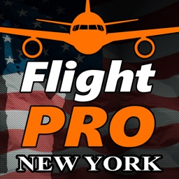 Pro Flight Simulator NY 4K