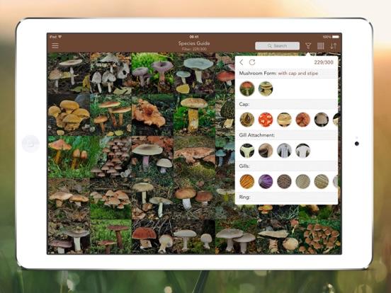 Mushrooms PRO Hunting Safely Screenshots