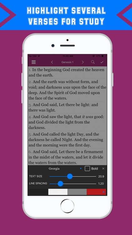 KJV Dramatized -King James Pro screenshot-6