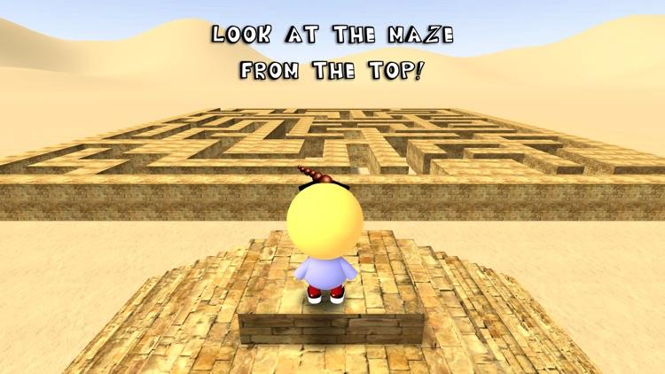 3D Maze / Labyrinth screenshot-0