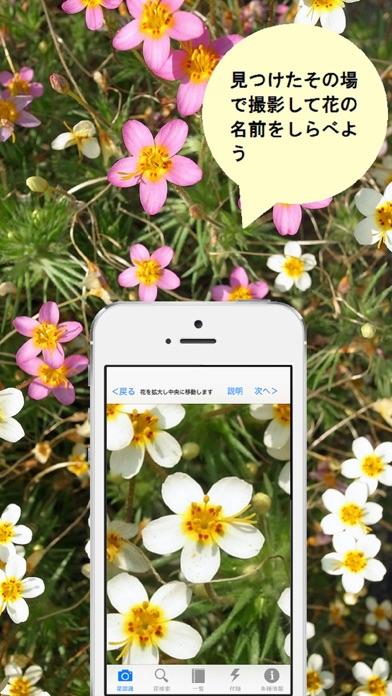 花しらべ 花認識/花検索のおすすめ画像1