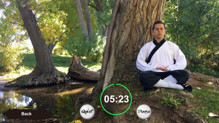 Tai Chi Trainer XR screenshot-7