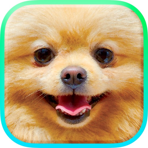 Download @Puppies free for iPhone, iPod and iPad