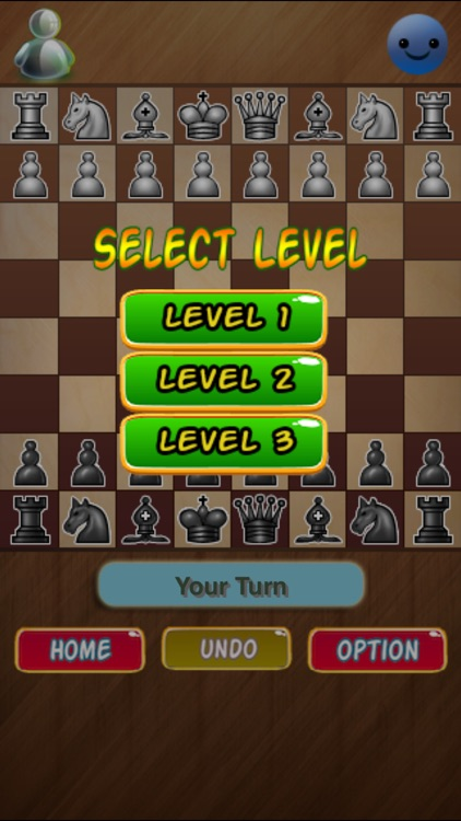 Chess Champion –  Play & learn