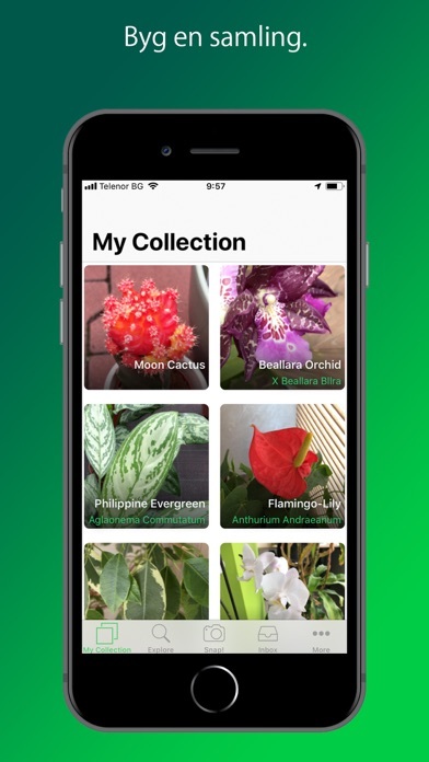 Screenshot for PlantSnap Pro: Identify Plants in Denmark App Store
