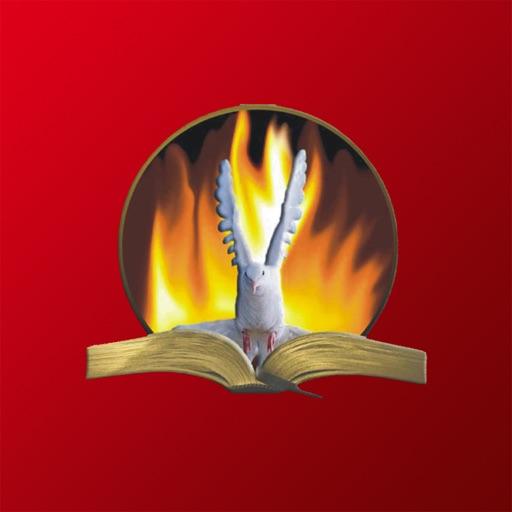 Igreja Batista Vida Nova