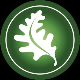 The Oak Leaf