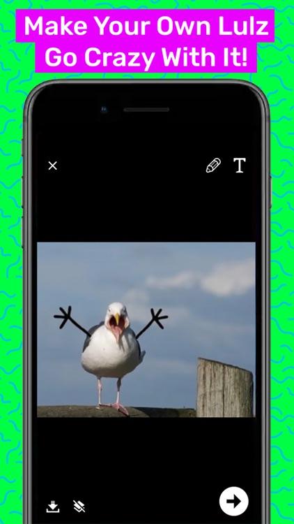 Lulz - Funny Memes screenshot-3