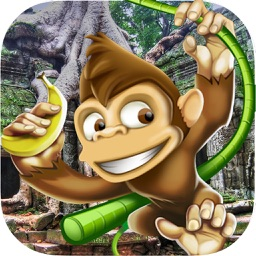 Monkey Adventure Running