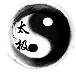 太极拳 陈氏太极拳74式视频教学by Mingqi Gong