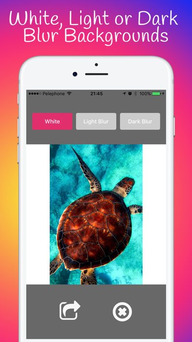 Square No Crop for Instagram by saar baruch (iOS, United