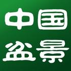 中国盆景 icon