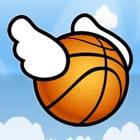 Ball Fly icon