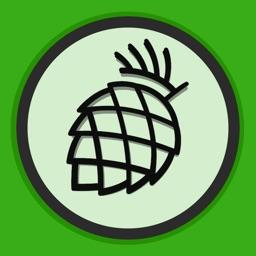 Pine.blog