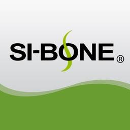SI-Bone DR