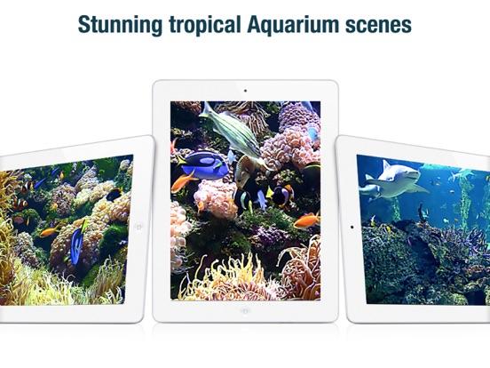 Screenshot #2 for Aquarium Live HD