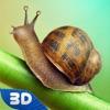 蜗牛野生动物模拟器3D