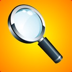 Reading Magnifier With Light