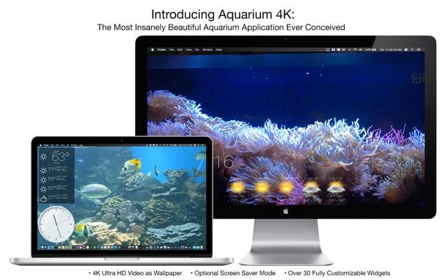 Aquarium 4k live wallpaper on the mac app store for Online aquarium fish store