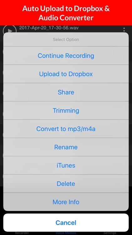 Voice Memos HD screenshot-3