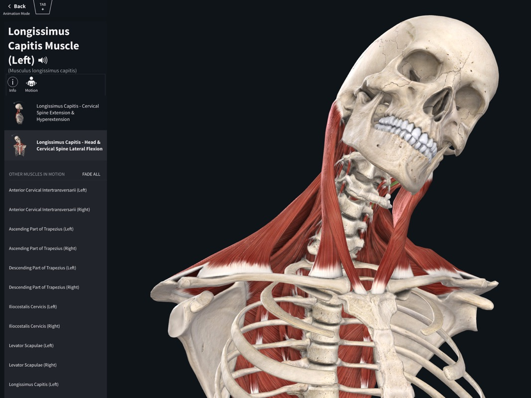 Complete Anatomy 2019 - Online Game Hack and Cheat | Gehack com