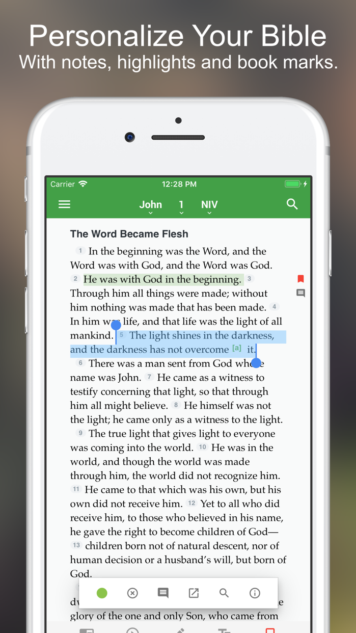 NIV Bible* Screenshot