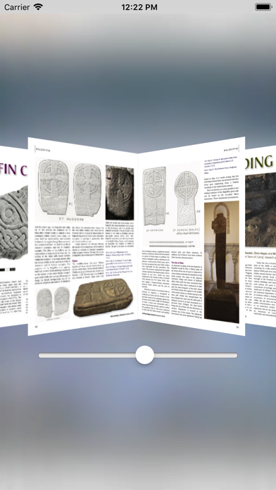 Archaeology Ireland screenshot 4