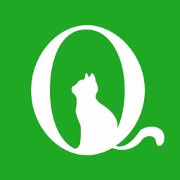 青葱猫-核心素养
