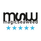 Msw Surf Forecast app review