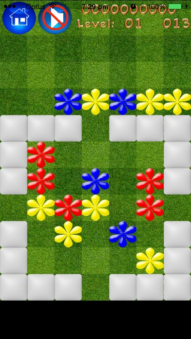 Flowers Popper