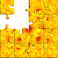 Codes for Jigsaw puzzle game - PuzzleTime Hack