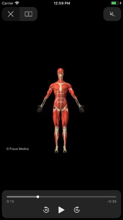 Junior Anatomy Atlas screenshot-3