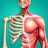 Descubre El Cuerpo Humano AR