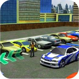 Car Drive Test Parking License
