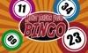 Bingo Caller - 75 & 90 Ball