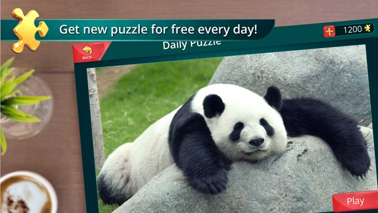 Cool Jigsaw Puzzles screenshot-2