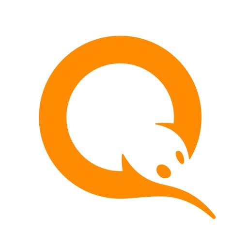 Кошелек QIWI - перевод денег