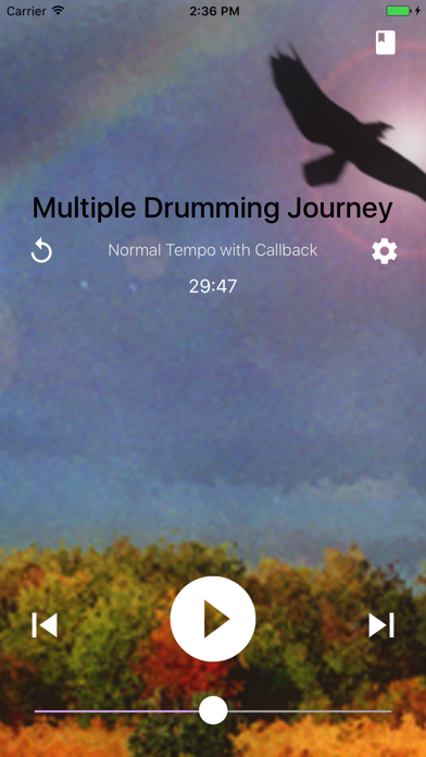 Shamanic Journey Drumming review screenshots