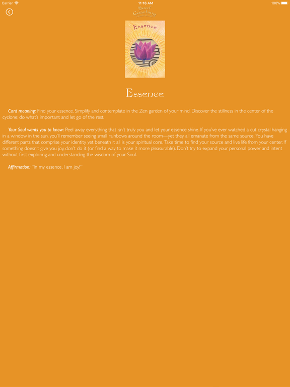 Soul Coaching Oracle Cards screenshot 9