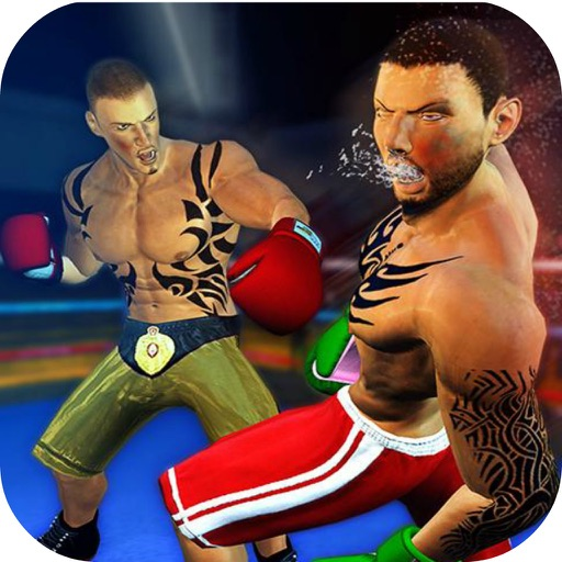 Boxing Stars Punch 3D icon