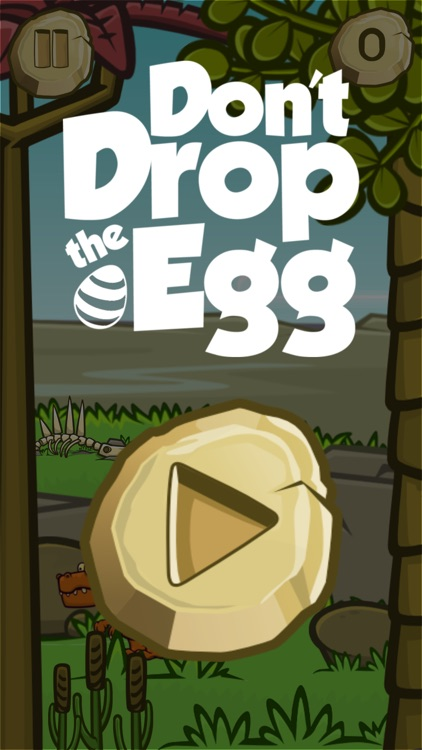 Don't Drop the Egg