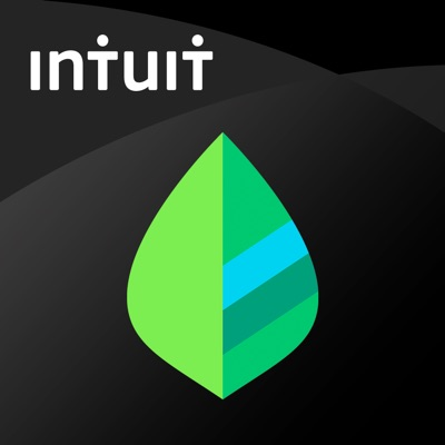 Mint:Personal Finance & Money ios app