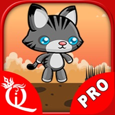 Activities of Brave Cat PRO