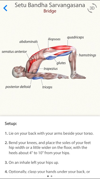 3D Yoga Anatomy screenshot-1