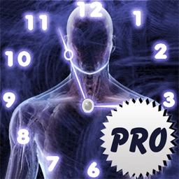 Age Calculator Original Pro