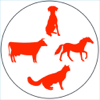 Animal  & Veterinary Drugs