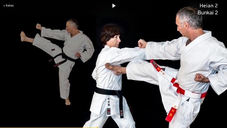 Kata Shotokan screenshot-4