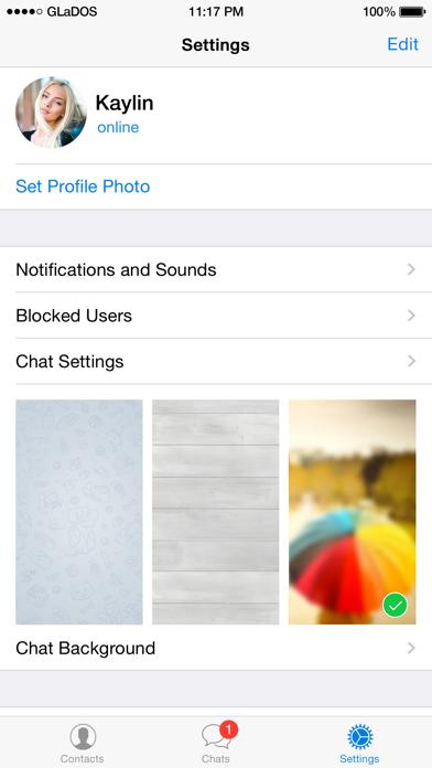 Telegram Messenger Screenshot 5
